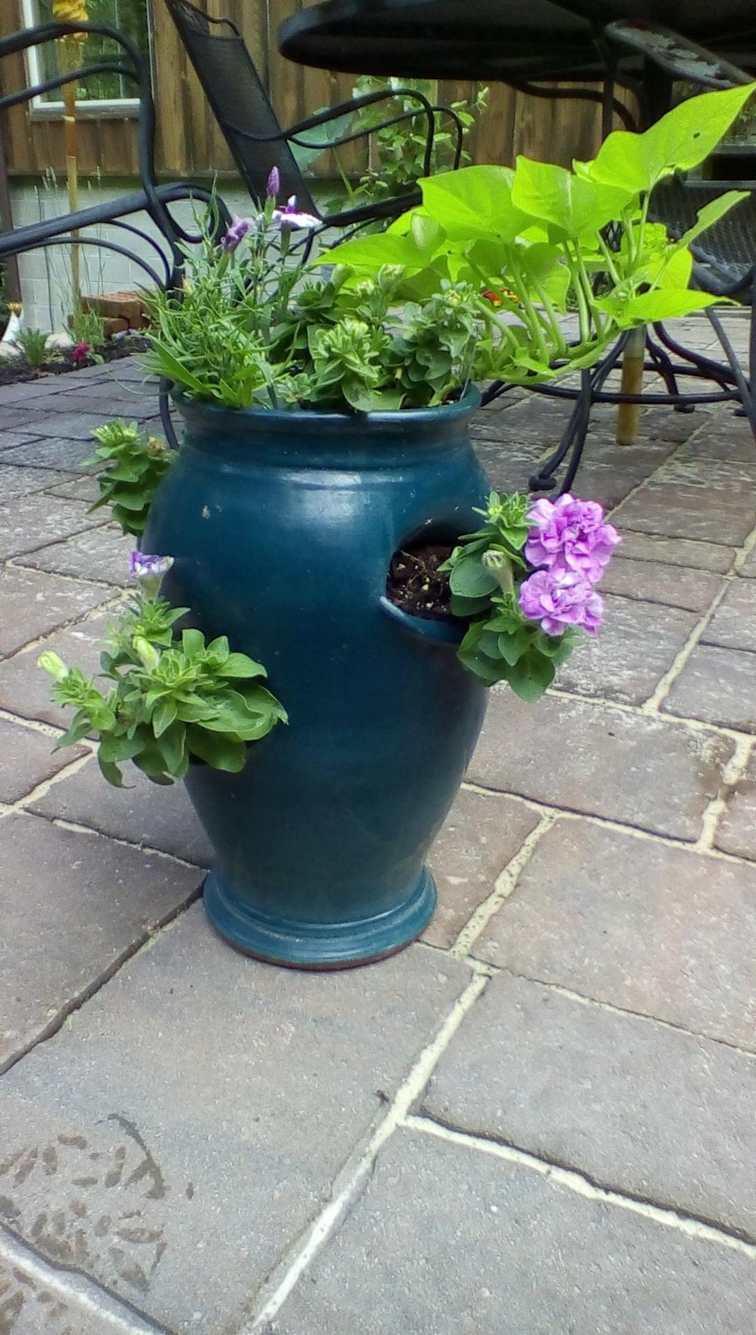 terracotta strawberry pot