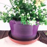 Purple Ceramic Flower Pot